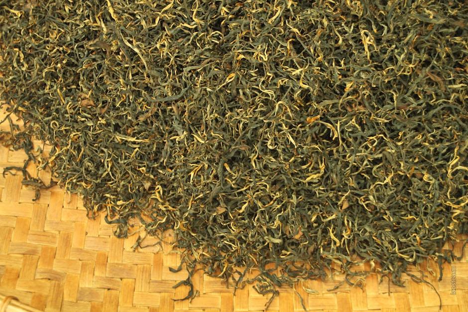 Phongsali, dove il tè laotiano diventa oro
