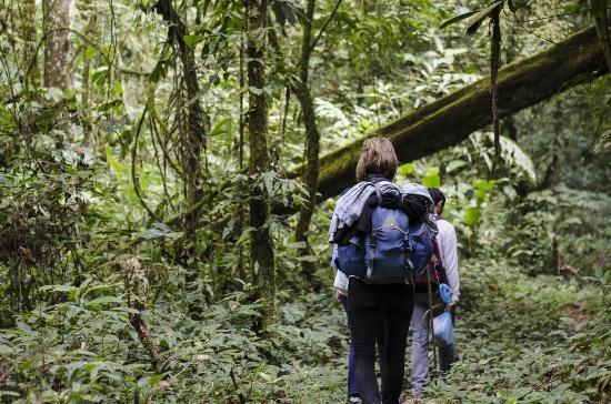 Trekking in Laos: 10 percorsi da non perdere!