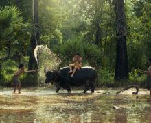 Salavan, viaggio nel Laos più selvaggio