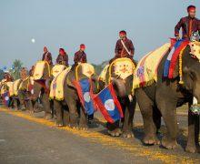 Sayabouly: riso, elefanti ed una Storia turbolenta