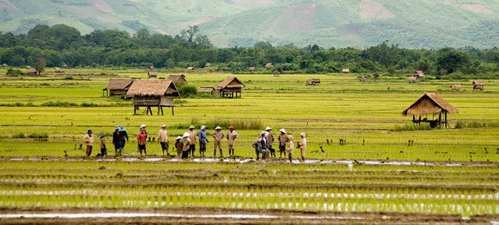 Laos e agrobusiness
